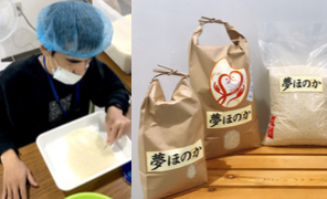 グラブハートのお米の仕分け作業